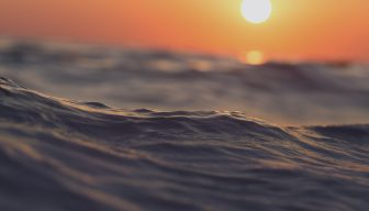 """Descargue las PPT del seminario """"Mar de Chile: un océano de oportunidades"""""""