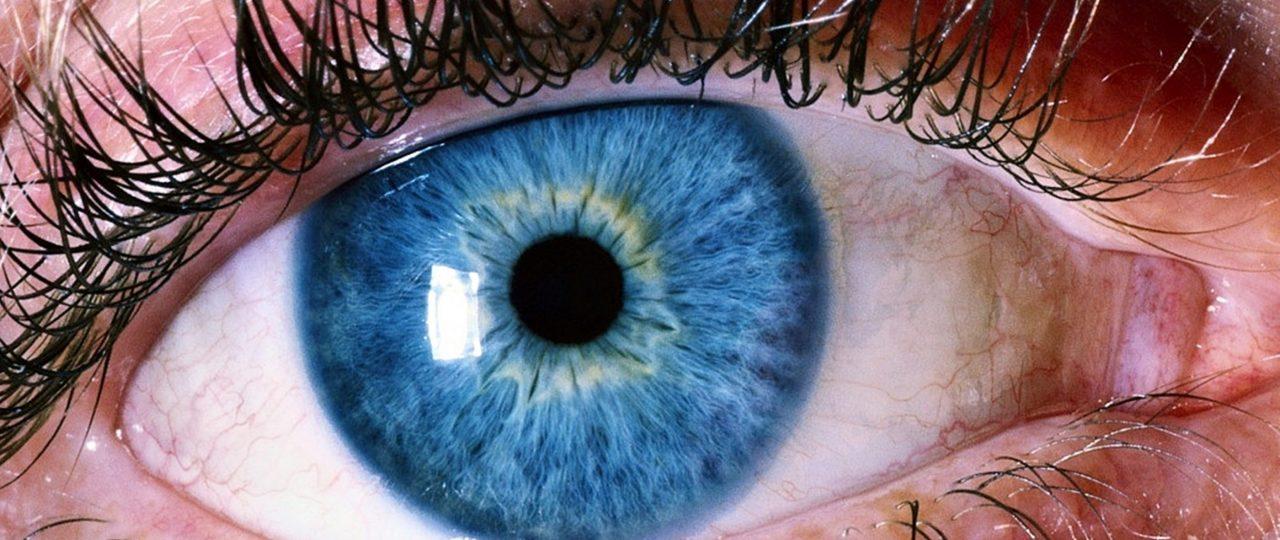 Google puede predecir problemas al corazón escaneando tu retina