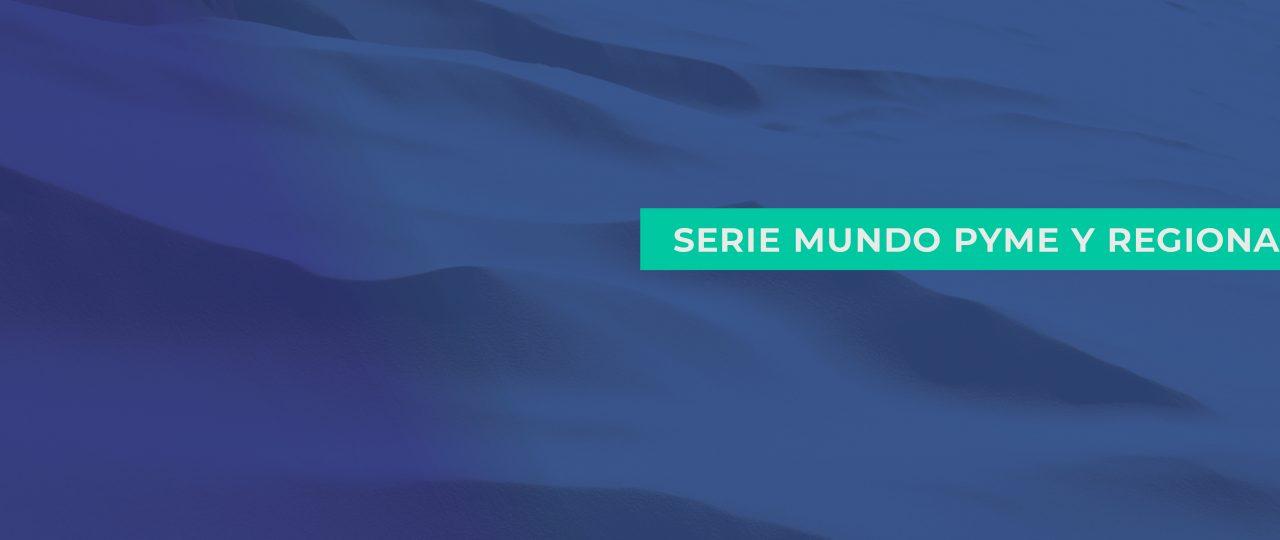 """Serie Mundo PYME y REGIONAL """"PYME, REGIONES y PROCESO CONSTITUYENTE"""""""